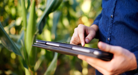Picture of a person with a tablet on a field.
